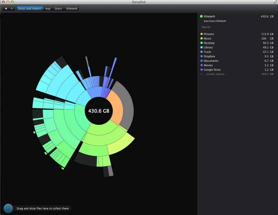 Photo - This application for Mac desktops, Daisy Disk, analyzes the storage space on your computer and then displays it in a visually appealing way. This screen shot shows photos are taking up 115.9 GB on this computer.