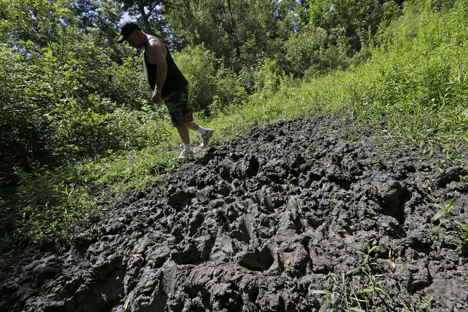 Photo - Trapper John Schmidt, a wildlife trapper, walks past damage from feral hogs that happened overnight while foraging near one of his traps in New Orleans, Tuesday, June 17, 2014. An estimated 5 million swine, descendants of both escaped domestic pigs and wild Eurasian boars imported by hunters, do about $800 million in damage a year to farms nationwide. Damage outside farms and population control bring the annual total to $1.5 billion. A preservative used to cure bacon is being tested as poison for feral hogs. Scientists with U.S. Department of Agriculture say sodium nitrite may be the best chance for controlling the big, prolific animals, which cost the U.S. about $1.5 billion a year_ including $800 million in farm damage.  (AP Photo/Gerald Herbert)