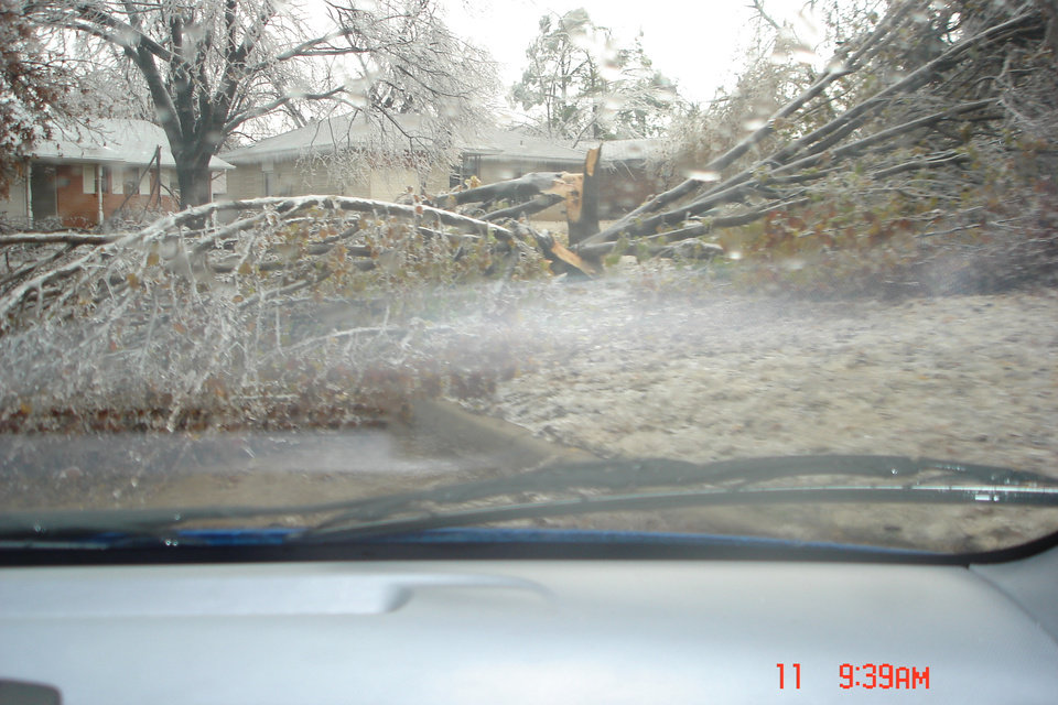 Bradford Pear that decided to split during the ice storm. Community Photo By: Rick Allison Submitted By: Rick , Midwest City