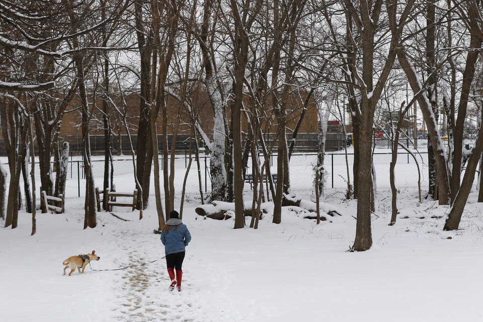Photo - A woman takes her dog to the dog park in the snow at Bickham Rudkin Park in Edmond, Wednesday, February 5, 2020.  [Photo by Doug Hoke/The Oklahoman]