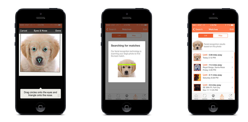 Photo - This undated illustration provided by FindingRover.com shows shows how a new smart phone application Finding Rover works. In May, San Diego County Animal Services became the first shelter system in the country to adapt the facial recognition plan. Every dog entering the county's three shelters will be put in the database. (AP Photo/FindingRover.com)