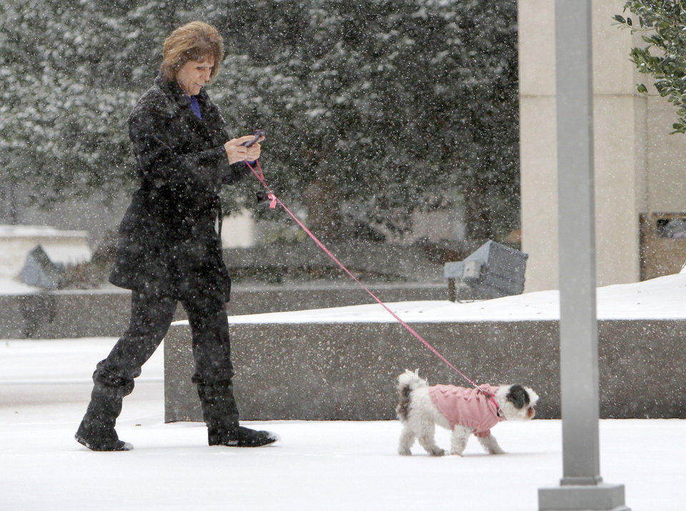 An Oklahoma City resident and her dog walk through a heavy snowfall in downtown Oklahoma City, OK, Friday, December 28, 2012,  By Paul Hellstern, The Oklahoman