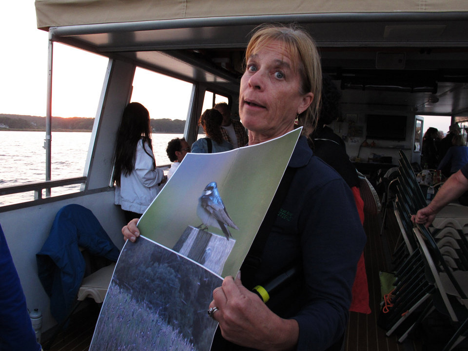 Photo - In this Oct. 5, 2013 photo, Mindy Yuknat holds a photo of a tree swallow aboard the