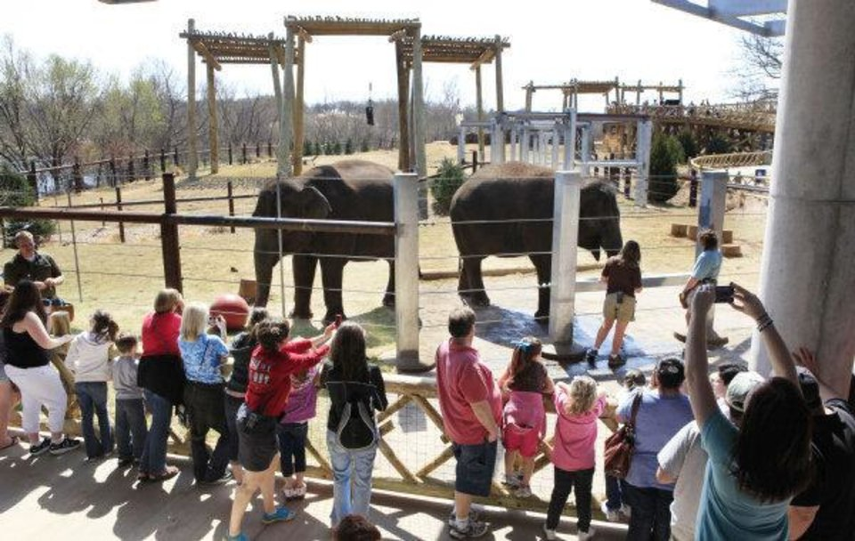 Photo - ELEPHANT EXHIBIT / HABITAT: The crowd gets a close-up view of Asha and Chandra after the afternoon elephant show at the Oklahoma City Zoo in Oklahoma City Wednesday, March 16, 2011. Photo by Paul B. Southerland, The Oklahoman ORG XMIT: KOD