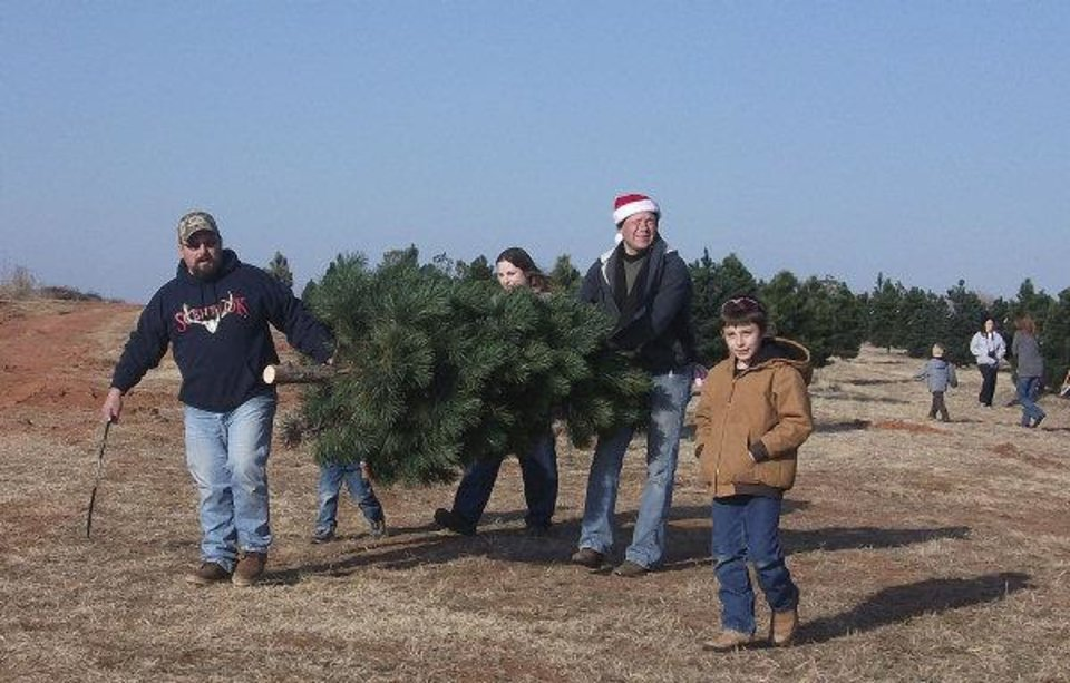 Photo - The Marler family, along with Martinbird Tree Farm employee Chris Baird, carry their carefully chosen and chopped tree from its growing spot at Martinbird Tree Farm. Photo by Susan Wright, for the Oklahoman