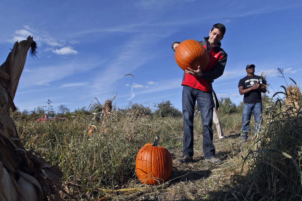 Photo -   Republican vice presidential candidate, Rep. Paul Ryan, R-Wis., picks a pumpkin at the Apple Holler farm pumpkin patch, Sunday, Oct. 7, 2012 in Sturtevant, Wis. (AP Photo/Mary Altaffer)