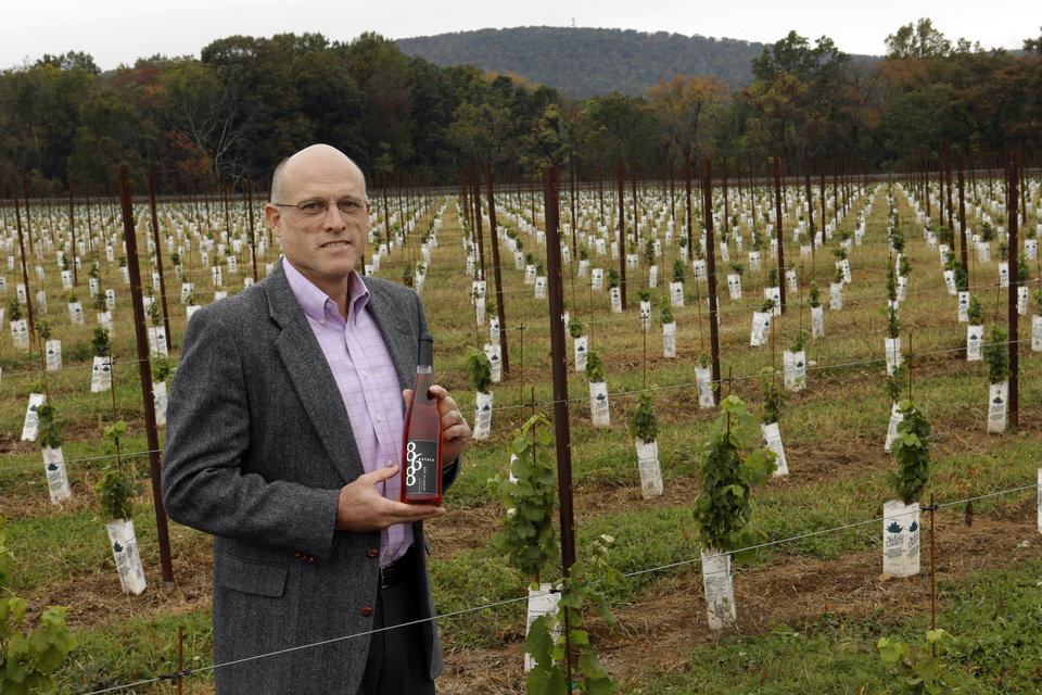 Photo -   In this Monday, Oct. 8, 2012 photo, Chris Charron, one of three owners of the 868 Estate Vineyards, poses for a portrait on the winery grounds in Purcellville, Va. Charron, who says he is an Independent, is leaning Republican. He likes Romney's run-government-like-a-business approach, though he's less impressed with the candidate.