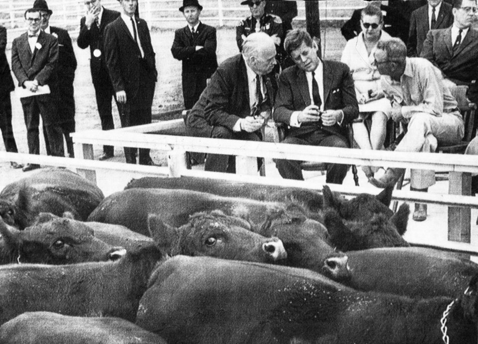 JOHN F. KENNEDY / ROBERT S. KERR / STATE / OKLAHOMA / VISIT: Prize black Angus congregate in front of President John F. Kennedy (center) at the Kerr ranch while Sen. R.S. Kerr (left) and Kerr ranch manager Paul Keesee (right) describe bloodlines and herd operations during President Kennedy's October, 1961 visit to southeastern Oklahoma. Staff photo taken 10/29/61 and unpublished.