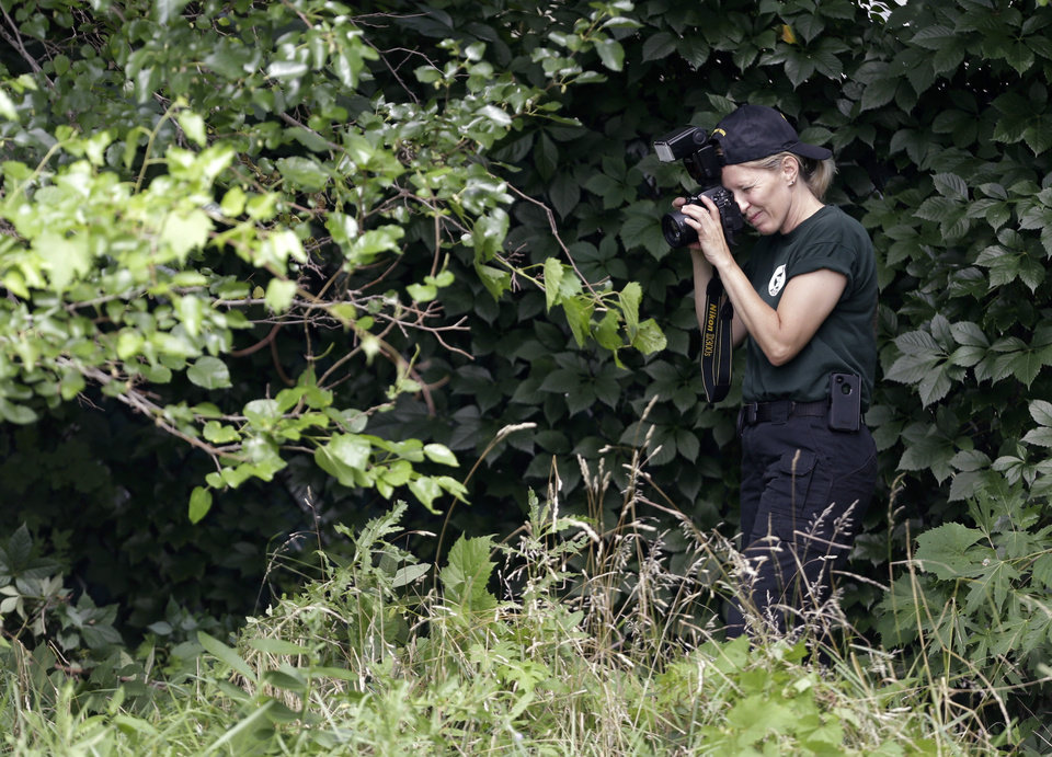 A woman from the Ohio Bureau of Criminal Identification and Investigation takes pictures in a wooded area Sunday, July 21, 2013 near where three bodies were recently found in East Cleveland, Ohio. Searchers rummaging through vacant houses in a neighborhood where three female bodies were found wrapped in plastic bags should be prepared to find one or two more victims, a police chief said Sunday. (AP Photo/Tony Dejak)