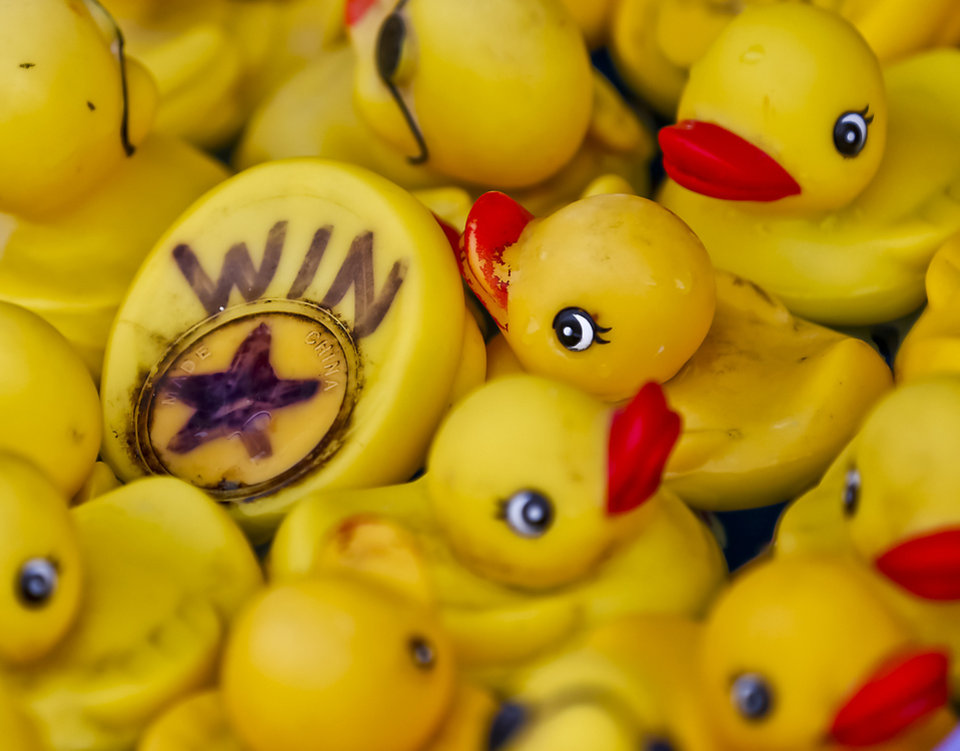 Photo - One of the winning ducks waits to be selected in the midway at the Oklahoma State Fair at State Fair Park on Friday, Sept. 14, 2012, in Oklahoma City, Oklahoma.  Photo by Chris Landsberger, The Oklahoman