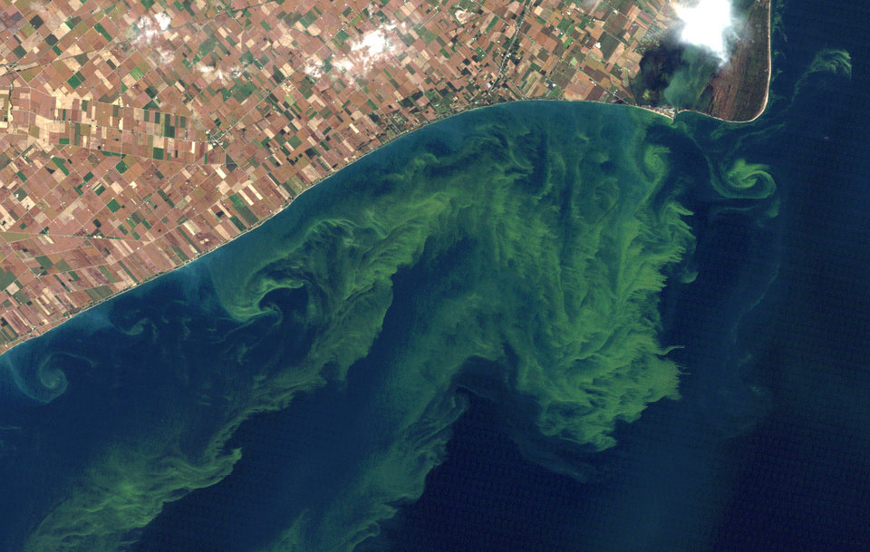 Photo - FILE - This Oct. 5, 2011 file satellite photo provided by NASA shows algae blooms on Lake Erie. U.S. Agriculture Secretary Tom Vilsack announces a new program under which the federal government will spend $1.2 billion over five years supporting conservation projects designed by universities, private companies, nonprofits and other local partners. An April, 2013, study said the warming climate and modern farming practices are creating ideal conditions for gigantic algae formations on Lake Erie. (AP Photo/NASA, File)