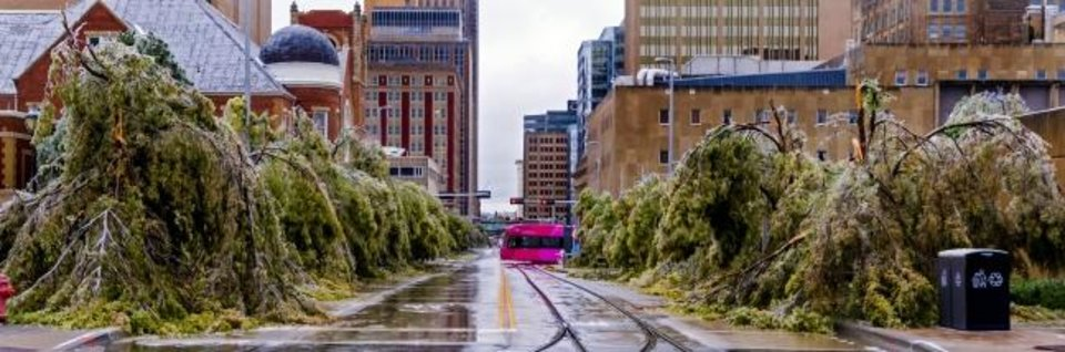 Photo -  The streetcar passes by ice covered trees that droop to ground along Robinson Ave. after a winter blast hit the state.  [CHRIS LANDSBERGER/THE OKLAHOMAN]