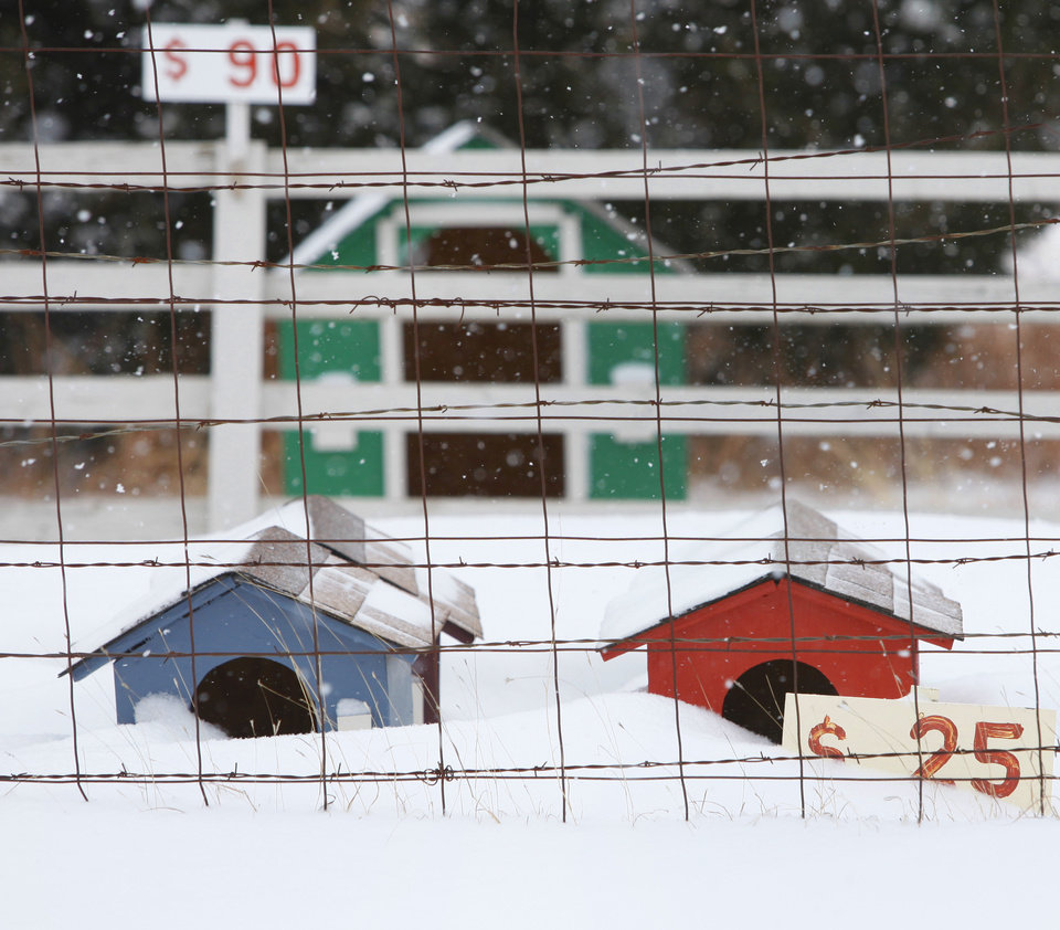 Photo - Dog houses are covered with snow on south Sooner rd. near Edmond , February  9 , 2011. Photo by Steve Gooch, The Oklahoman