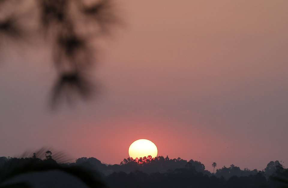 Photo - The sun sets behind trees at the venue of the training session of Japan in Itu, Brazil, Saturday, June 21, 2014.  (AP Photo/Shuji Kajiyama)
