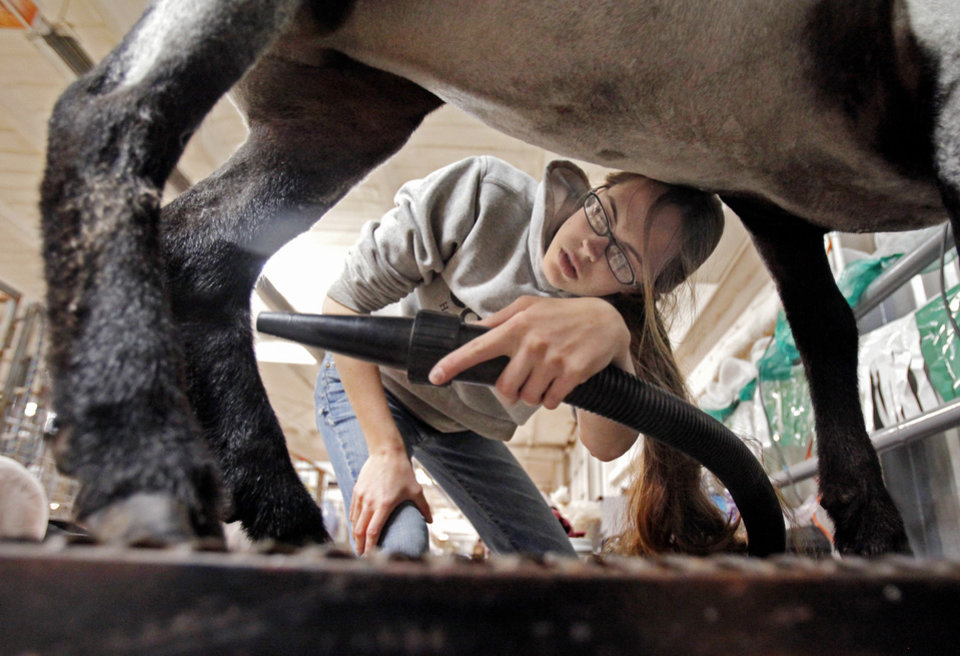 Scarlet Nelson-Gardner, 18, from Moore, dries her lamb in preparation for showing at the Junior Livestock Show at the Cleveland County Fairgrounds on Wednesday, Feb. 29, 2012, in Norman, Okla. Photo by Steve Sisney, The Oklahoman