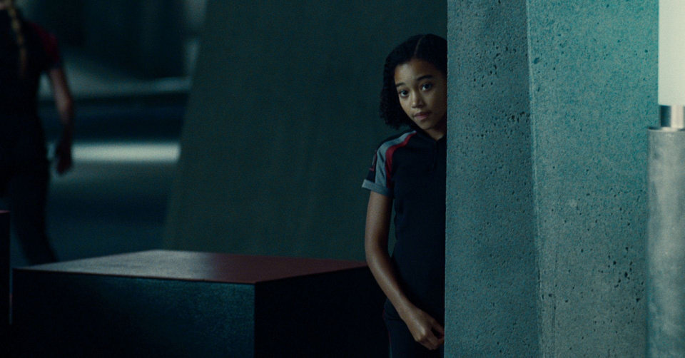 "Amandla Stenberg is 'Rue' in ""The Hunger Games."" PHOTO COURTESY OF LIONSGATE. <strong>Photo courtesy of Lionsgate</strong>"