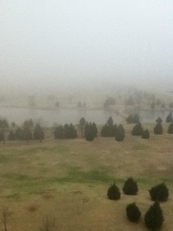 Foggy from The Oklahoman this morning