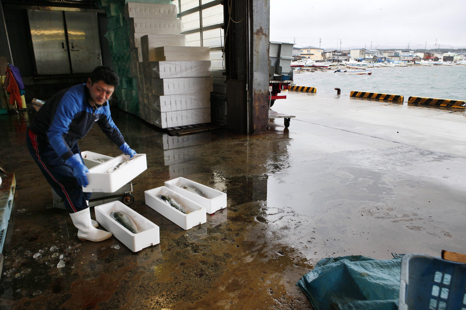 In this Nov. 9, 2012 photo, a fish market worker carries the day's catch at a port in Oma in Aomori, northern Japan. In nearby Oma, construction is set to resume on an advanced reactor that is not a fast-breeder but can use more plutonium than conventional reactors. Its construction, begun in 2008 for planned operation in 2014, has been suspended since the March 2011 Fukushima nuclear meltdowns, and could face further delays as Japan's new nuclear watchdog prepares new safety guidelines. (AP Photo/Koji Sasahara)