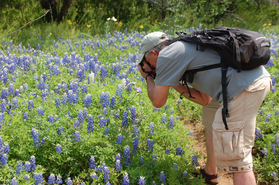 Photo - A Canyon of the Eagles guest photographs bluebonnets. Photo by Wesley K.H. Teo.