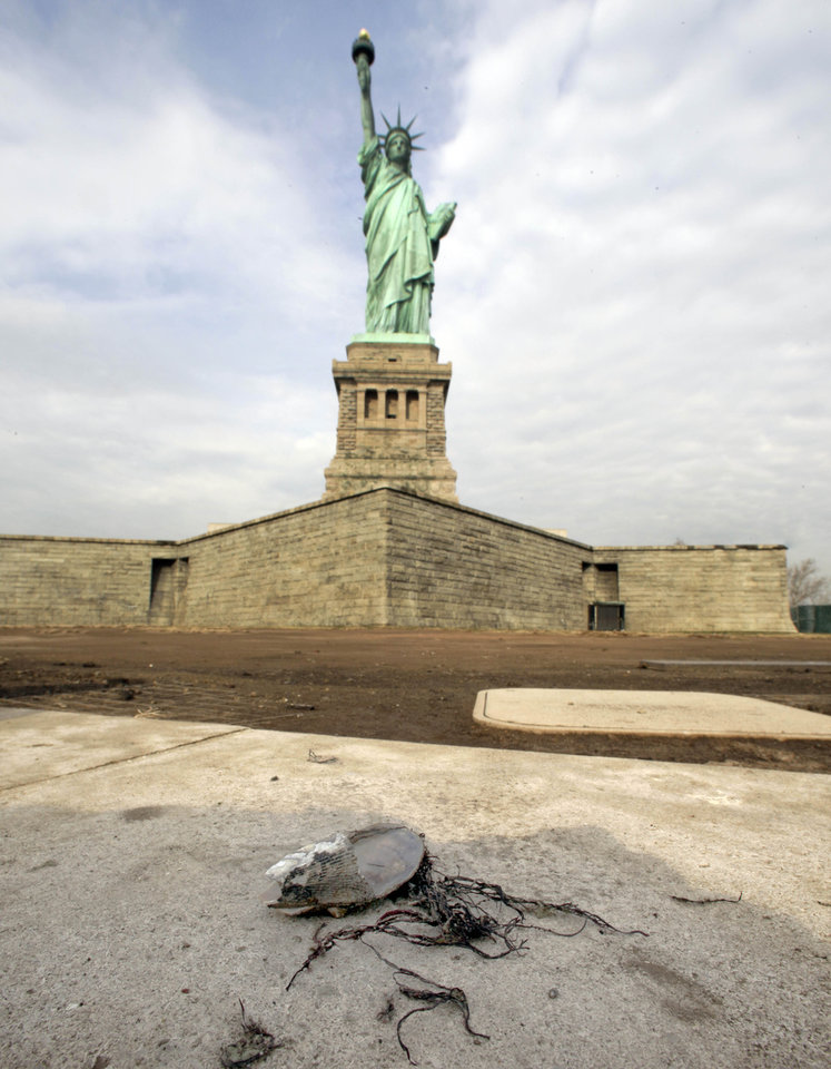 Photo - A sea shell rests on a wall surrounding the Statue of Liberty, in New York,  Friday, Nov. 30, 2012. Tourists in New York will miss out for a while on one of the hallmarks of a visit to New York, seeing the Statue of Liberty up close. Though the statue itself survived Superstorm Sandy intact, damage to buildings and Liberty Island's power and heating systems means the island will remain closed for now, and authorities don't have an estimate on when it will reopen. (AP Photo/Richard Drew)