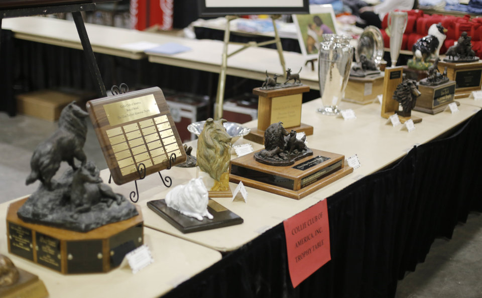Photo - Trophies at the Collie Club of America dog show at the Cox Convention Center in  Oklahoma City, walk their dogs in the Myriad Botanical Gardens, Wednesday, March 11, 2015. Photo by Doug Hoke, The Oklahoman