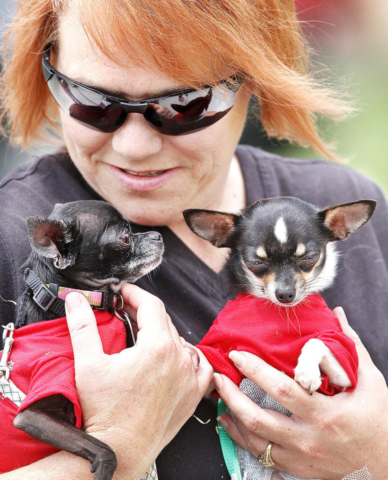 Photo - Bobbie Thompson, Oklahoma City, cradles Skeeterbug and Samantha, Chihuahuas from the Tiny Tails Dog Rescue organization in Oklahoma City. About 200 people attended Pupnic, a neighborhood gathering of dog owners at Ross Park on Saturday.