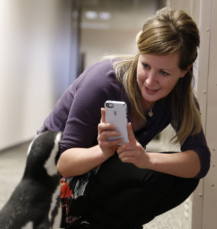 Artist Suzanne Green gets a photo of one of the Magellanic penguins as SeaWorld visited the OPUBCO on Thursday, Feb. 21, 2013, in Oklahoma City, Okla. Photo by Doug Hoke, The Oklahoman