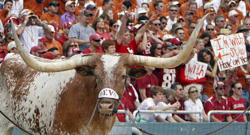 Photo - The Texas mascot Bevo stands on the sidelines during the Red River Rivalry college football game between the University of Oklahoma Sooners (OU) and the University of Texas Longhorns (UT) at the Cotton Bowl in Dallas, Saturday, Oct. 8, 2011. Photo by Chris Landsberger, The Oklahoman