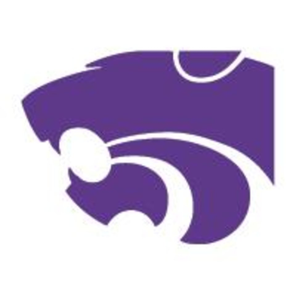Photo - KANSAS STATE UNIVERSITY / KSU / LOGO / BUTTON / BUG / GRAPHIC