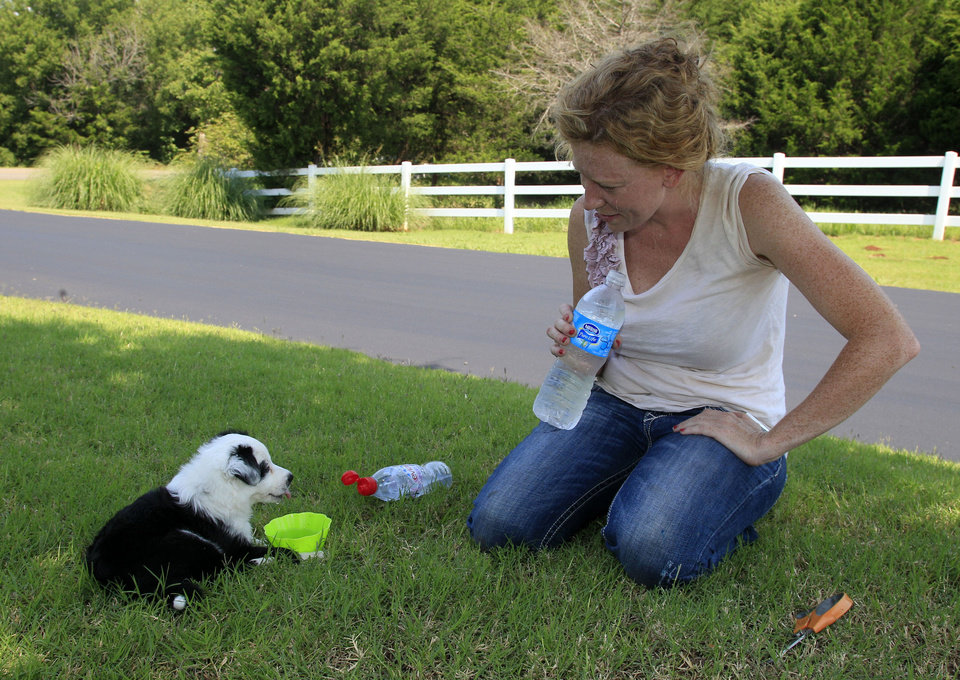 Photo - Landscaper Heather Parrott, owner of Neighborhood Gardener, takes a water break with her puppy, Sophia, while working on the landscaping at a housing development in Edmond. Parrott says this year's heat is not as bad as last year's because it came on gradually, allowing her body to acclimate to it. AP PHOTO