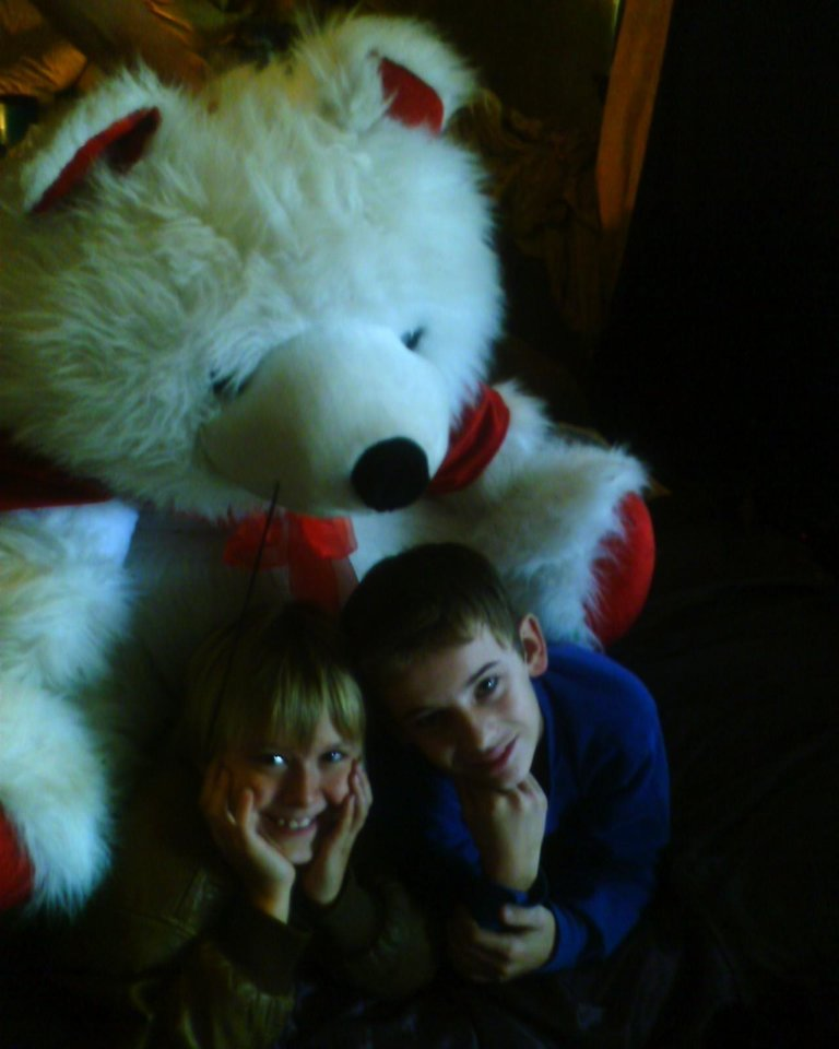Christmas TEddy bear<br/><b>Community Photo By:</b> TAMA<br/><b>Submitted By:</b> Tama, Midwest
