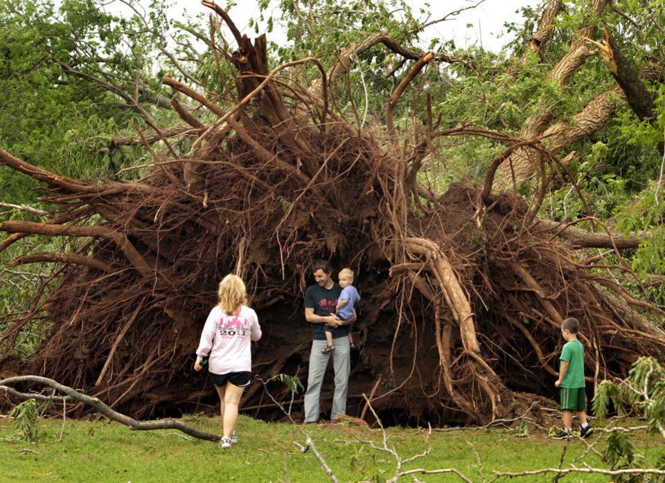 Photo - Above: Zach Winters and his son, Leif, 3, stand next to an uprooted tree in Rotary Park at Boyd Street and Wylie Road.