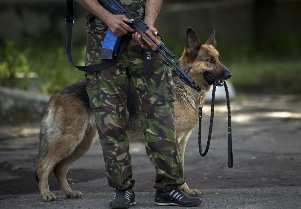 Photo - Dana, the German shepherd, holds its own leash as a pro-Russian rebel holds a weapon while members of the OSCE mission to Ukraine and Holland's National Forensic Investigations team inspect a refrigerated train loaded with the bodies of passengers, in Torez, eastern Ukraine, 15 kilometers (9 miles) from  the crash site of Malaysia Airlines Flight 17, Monday, July 21, 2014. The train carrying the bodies of over 200 passengers and crew of the Malaysia Airlines 17 left a station in the eastern Ukrainian town of Torez, Monday evening. (AP Photo/Vadim Ghirda)