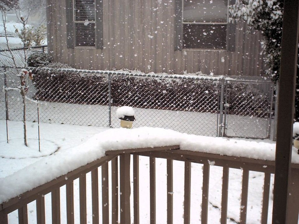 """Jeb as you were saying that the snow was slowing down and that Midwest City had only 1"""" of snow - I took this picture.  The flakes are """"Silver Dollar"""" size and we have had over 3"""" here.<br/><b>Community Photo By:</b> PaKelley<br/><b>Submitted By:</b> Pa, Oklahoma City"""
