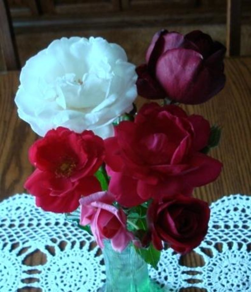 Roses from my garden.<br/><b>Community Photo By:</b> C Jurina<br/><b>Submitted By:</b> Cindy, Guthrie