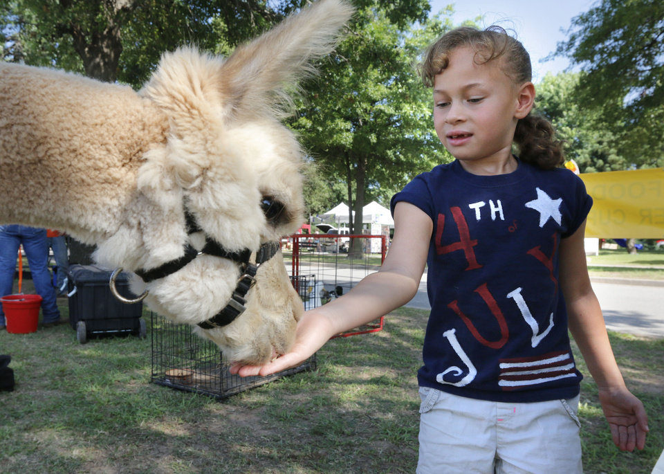 Photo - Six year old Dahlia Hickerson feeds a llama at a petting zoo during Bethany's Fourth of July events at Eldon Lyon Park in Bethany, OK, Friday, July 4, 2014,  Photo by Paul Hellstern, The Oklahoman