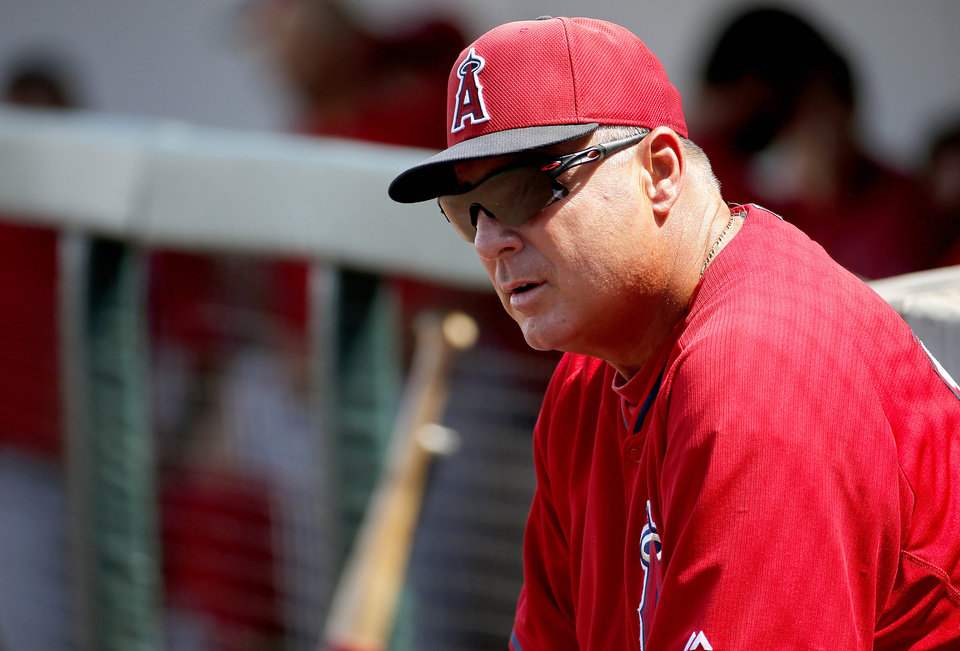 Photo - Los Angeles Angels manager Mike Scioscia watches his team  between innings of a game against the Chicago Cubs during a spring training baseball  Tuesday, March 25, 2014, in Mesa, Ariz. (AP Photo/Matt York)