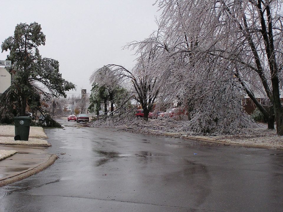 Lilac Ln in Midwest City<br/><b>Community Photo By:</b> Julie M<br/><b>Submitted By:</b> julie, Oklahoma City