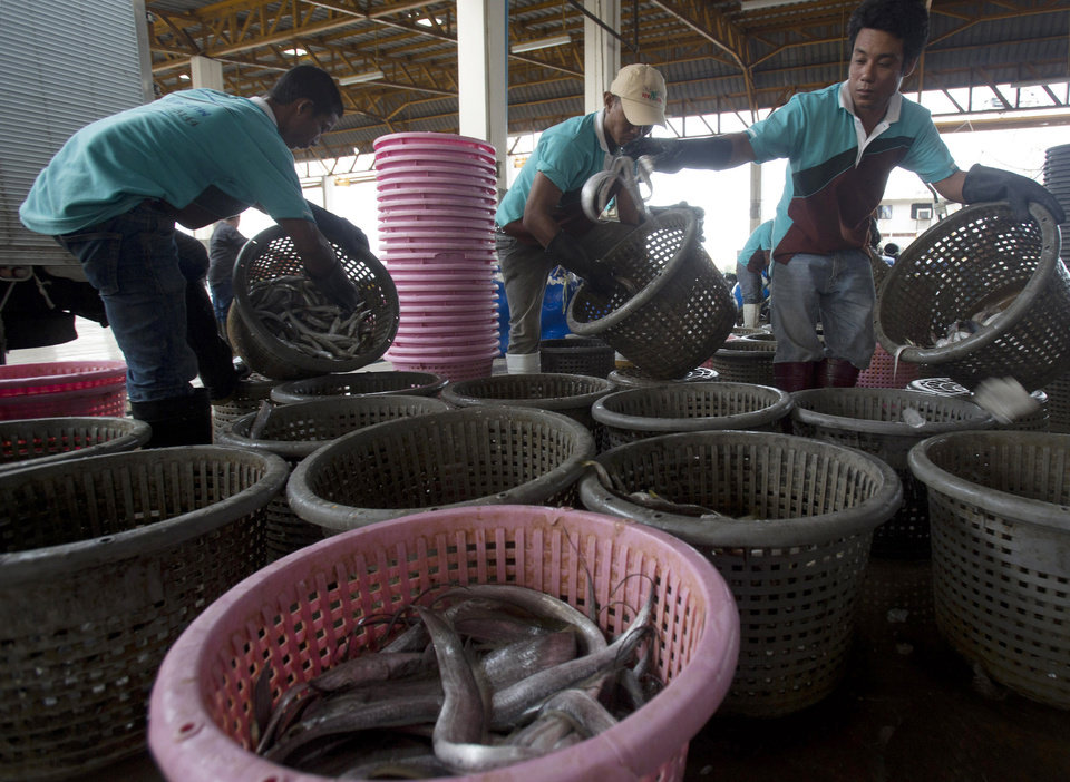 Photo - Migrant workers separate freshly caught fish by size at a fish market in Samut Sakhon Province, west of Bangkok, Friday, June 20, 2014. The United States has blacklisted Thailand and Malaysia for failing to meet its minimum standards in fighting human trafficking, a move that could strain relations with two important U.S. partners in Asia. Thailand had mounted a determined campaign to prevent a downgrade that could exact a reputational cost on its lucrative seafood and shrimp industries for which America is a key market. (AP Photo/Sakchai Lalit)