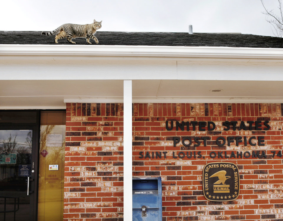 A cat walks across the roof's edge on the United States Post  Office in the tiny Pottawatomie community of St. Louis, on Monday, Dec. 19, 2011.  This post office is included on a list released recently of postal facilities  being considered for closing. Photo by Jim Beckel, The Oklahoman