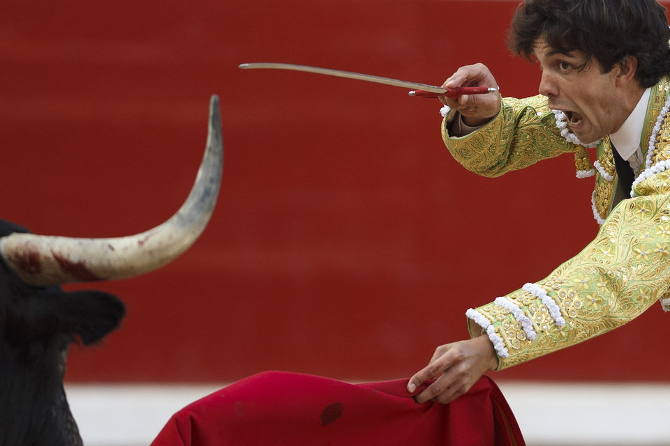 Photo - Spanish bullfighter Juan del Alamo kills a bull with his sword during a bullfight of the San Fermin festival, in Pamplona, Spain, Wednesday, July 9, 2014. Revelers from around the world arrive in Pamplona every year to take part on some of the eight days of the running of the bulls glorified by Ernest Hemingway's 1926 novel