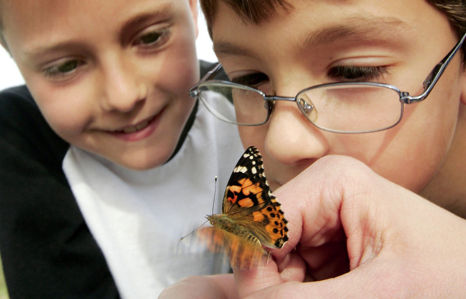 Photo - PAINTED LADY BUTTERFLY: Brian Varva, 8, and Mason Gregg, 8, get a close look at one of the butterflies Wed. April 8, 2009 that will be released from the North lawn of McFarlin United Methodist church in Norman, OK. Photo by Jaconna Aguirre, The Oklahoman. ORG XMIT: KOD
