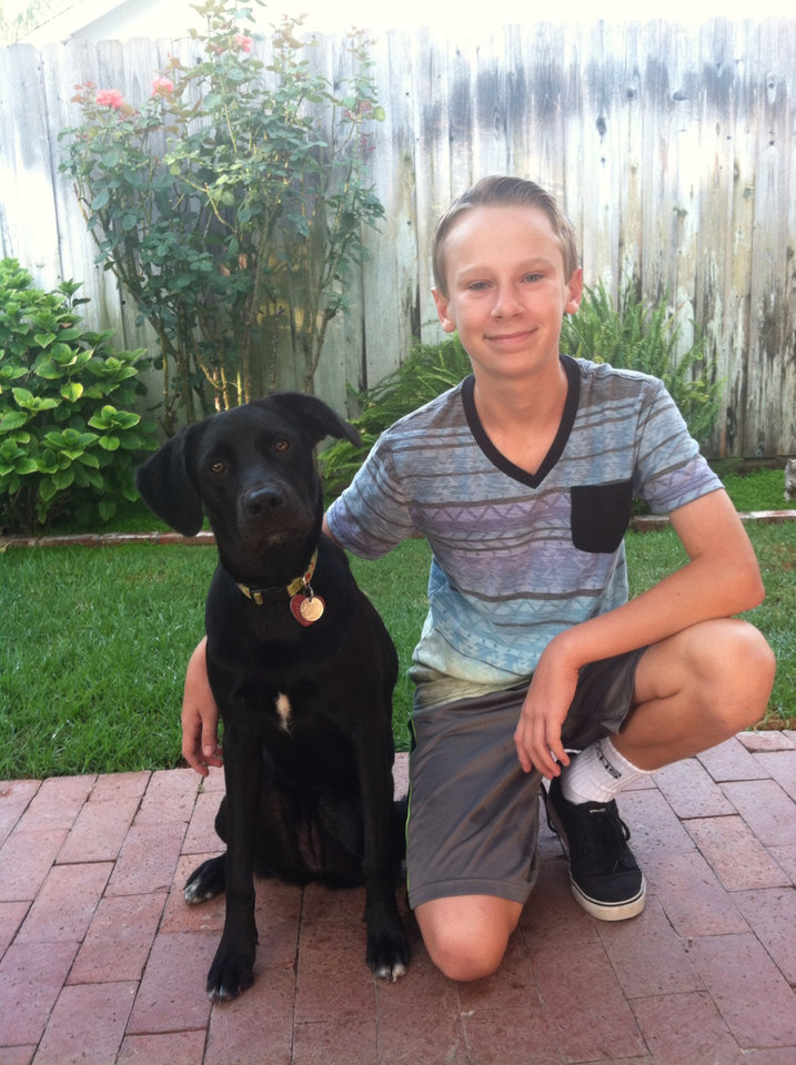 Photo - This Thursday, Aug. 21, 2014 photo provided by Dianne Larson shows Tanner Larson, 14, and his Labador, 1 year-old Ruby in Santa Clarita, Calif. For millions of dogs across the country, summer is gone and so are their best buddies. Most dogs object for a while but eventually adjust to the new hours.  But millions of others will feel abandoned, panicky, sad and unable to cope as they look for ways to lash out. (AP Photo/Dianne Larson)