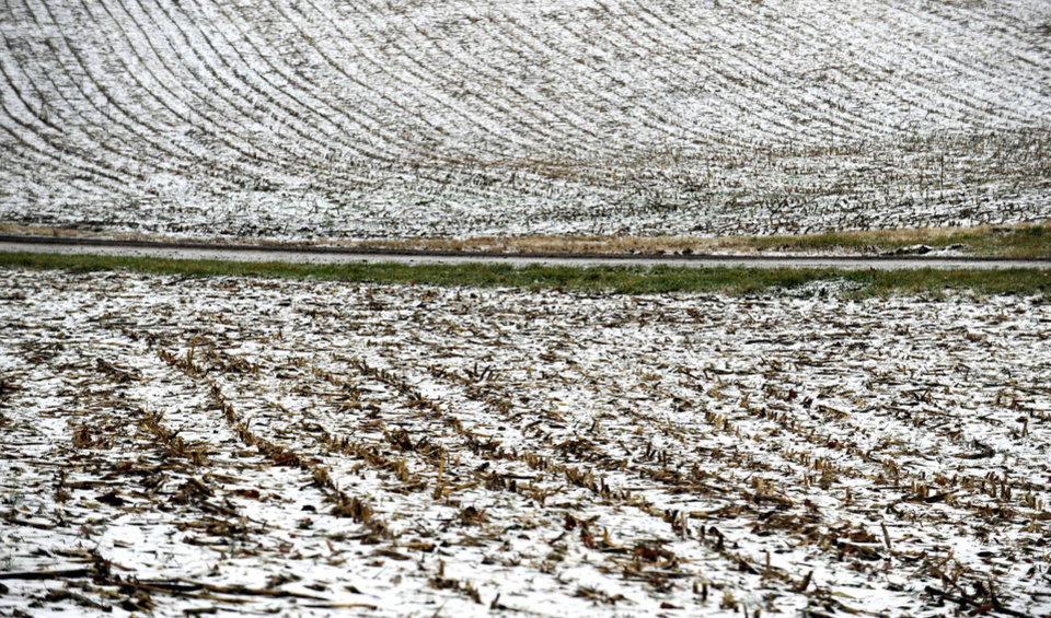 A snow dusted cornfield in Culpeper county shows the effects of a winter storm. An overnight storm brought rain, snow and ice to the Culpeper area on Wednesday, Dec. 26 2012. (AP Photo/The Free Lance-Star, Reza A. Marvashti)
