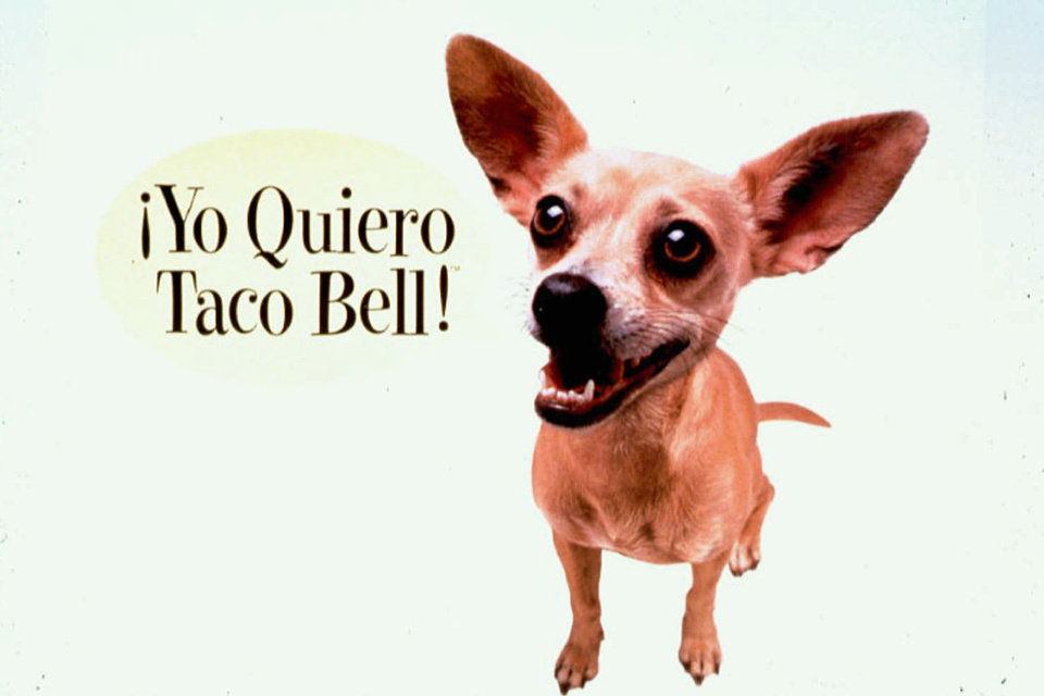 Handlers say Gidget the Chihuahua, whose Taco Bell commercials made her a star, has died. She was 15.    AP PHOTO