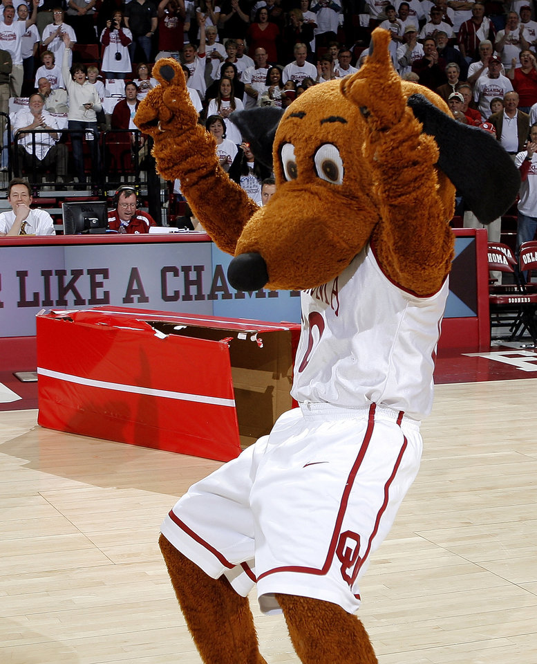 Photo - Former University of Oklahoma (OU) college basketball mascot Top Daug    PHOTO PROVIDED BY MIKE HOUCK / OKLAHOMA ATHLETICS MEDIA RELATIONS
