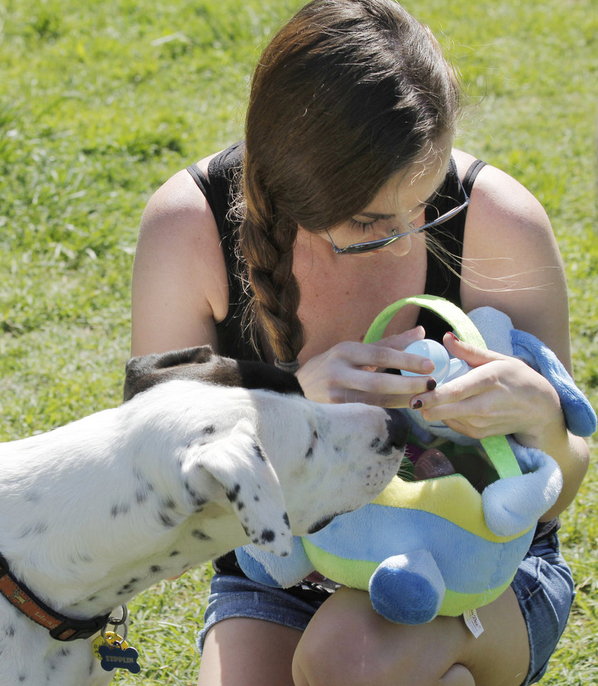 Photo - Zepplin gets a skill of the treats in the eggs held by Courtney Mills during the first Hound Hunt, an Easter Egg hunt for dogs inside the dog park at Bick ham-Rudkin Park in Edmond Sunday April 1, 2012. The eggs are filled with dog treats. Photo by Doug Hoke, The Oklahoman