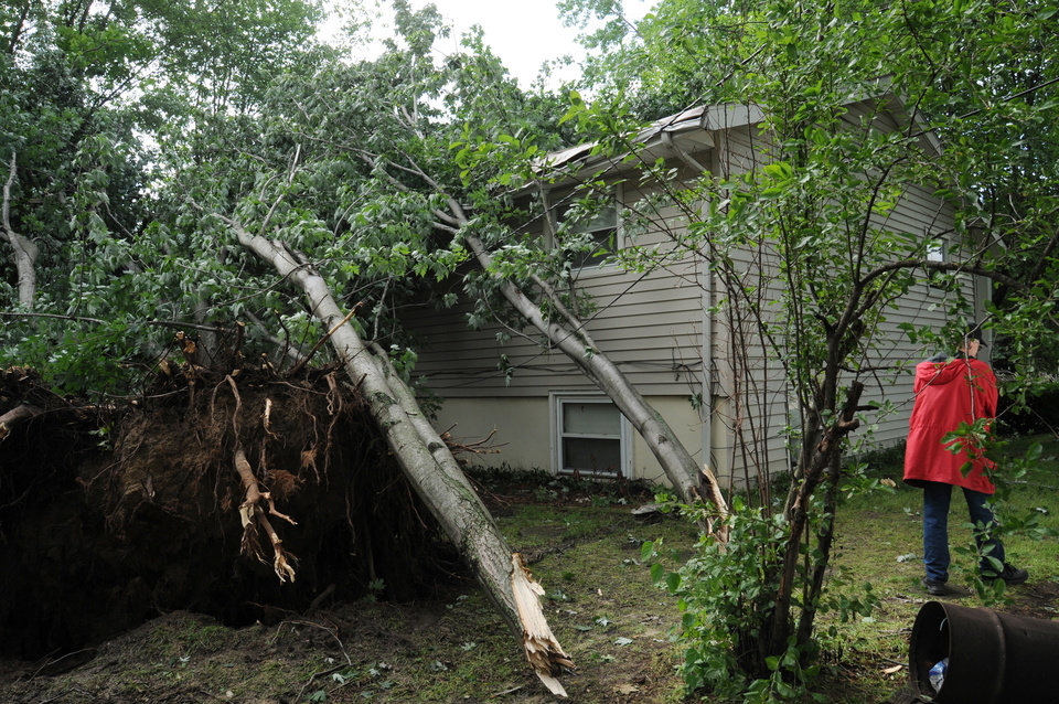 Photo - A person looks at an uprooted tree after a storm in St. Joseph Township, Mich., Tuesday, July 1, 2014. Severe thunderstorms packing high winds knocked down trees and power lines across parts of Michigan, leaving more than 230,000 without power and injuring a firefighter. (AP Photo/The Herald-Palladium, Don Campbell)