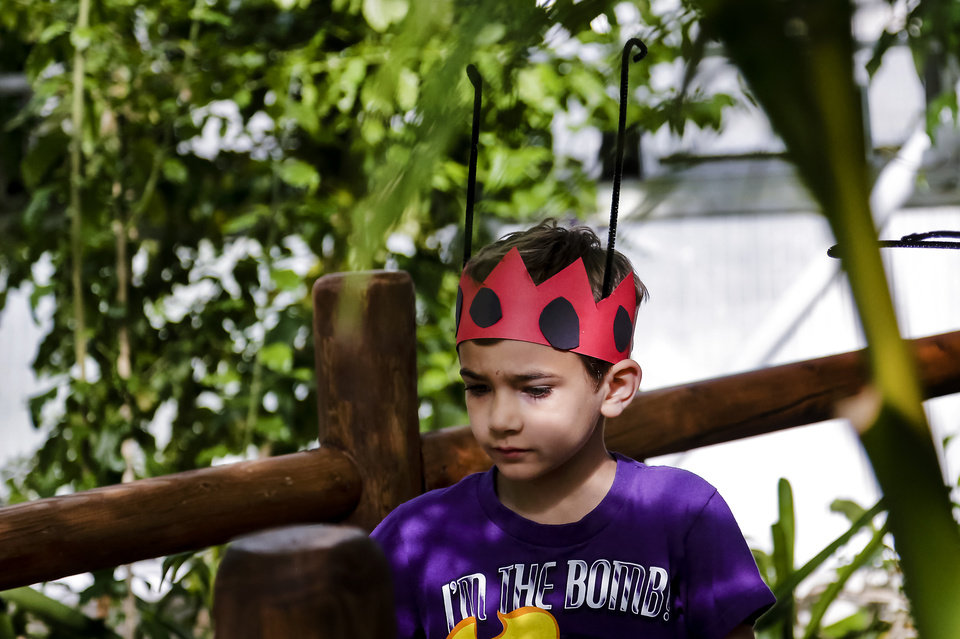 Stephen James wears a ladybug crown and he walks through the Myriad Botanical Gardens/Crystal Bridge during the ladybug release on Tuesday, May 7, 2013, in Oklahoma City, Okla. Photo by Chris Landsberger, The Oklahoman ORG XMIT: KOD