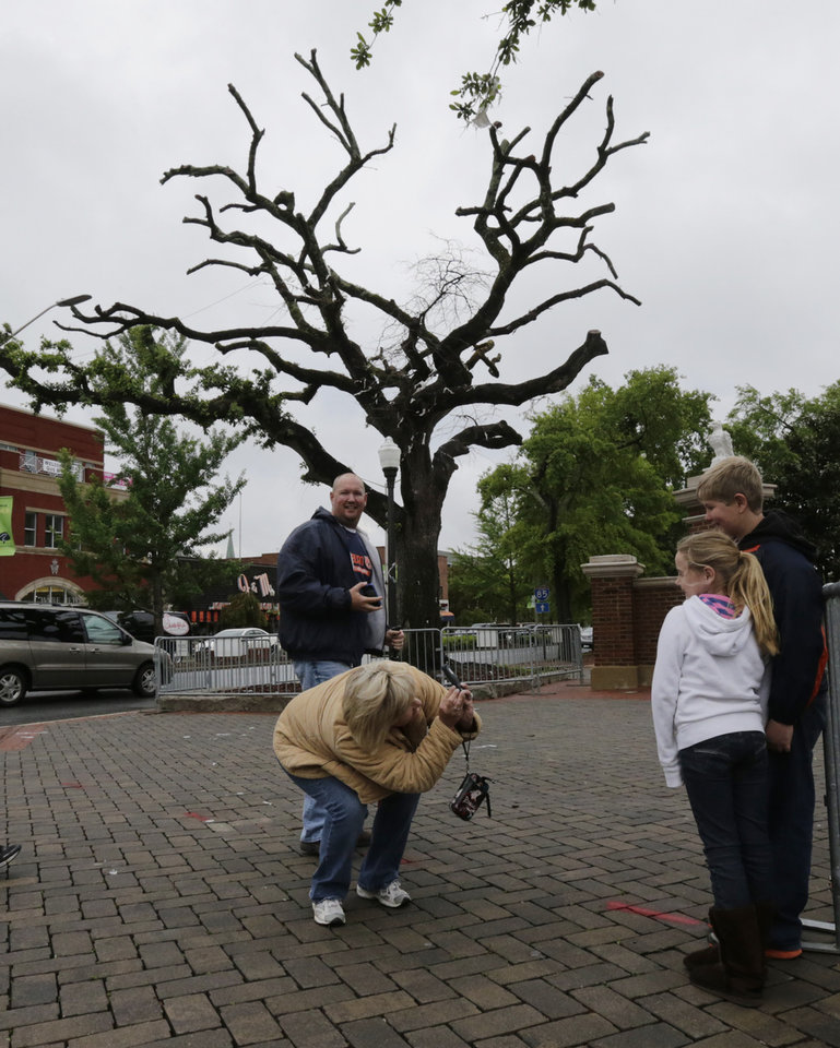 Photo - John Shelton, rear, of Trussville, Ala., watches as his wife Rhonda photographs their children, Josie, 8, and Dylan 11 next to one of the poisoned oak trees at Toomer's Corner in Auburn, Ala., Friday, April 19, 2013. The tradition of